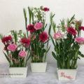 バレンタイン 生花 フラワーアレンジメント